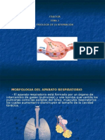 tema3fisiologia-100208160606-phpapp02