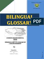 Environment Glossary
