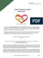 DR Yasko Methylation Sample Report