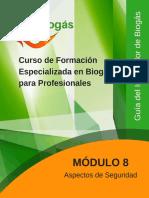 20171106 Biogas Modulo8 Seguridad