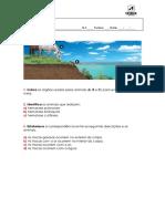 aencsi6_qa_respiratorios (1).docx