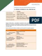 Pauta Analisis a Priori NT1 - NT2 U III