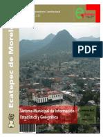 Estadistica Ecatepec.pdf