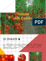 tomate-120717111736-phpapp01
