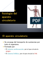 3. Aparato_circulatorio (1)