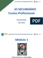 Psicologia_C.profissional