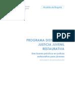 Documento de Sistematizacion PDJJR Final
