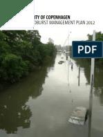 Cloudburst Management plan 2010.pdf