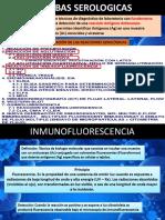 TEMA 11 IFD-IfI y Hemaglutinación