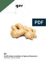 Ginger (English).pdf