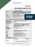 2) Resumen Ejecutivo - Ficha