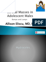 Scrotal Masses in Adolescent Males