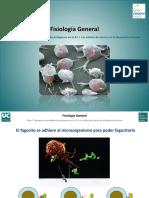 Tema 7-Bloque III-Receptores Especificos de Patogenos.pdf