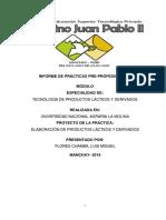 Informe de Prácticas Pre Profesionales Luis Migel