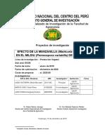 Proyecto de Manzanilla 01 12 Senin