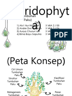 Pteridophytaaa Presentasi Rangkuman Jadi