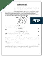parte teorica resumida para laboratorio de fisica III de fuerza magnetica