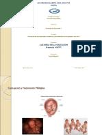 Tarea 2, Psicologia del Desarrollo 1.ppt