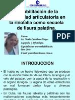 rehabilitacion-de-la-motricidad-articulatoria-en-la-rinolalia-como-secuela-de-fisura-palatina.pptx
