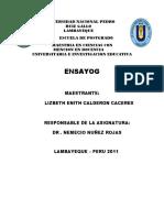 53146556-Ensayo-Curriculum.docx