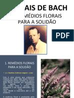 Remédios Florais Para a Solidão