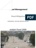 Flood Mitigation