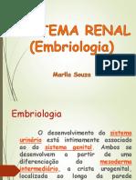 EMBRIOLOGIA+SISTEMA+RENAL.ppt