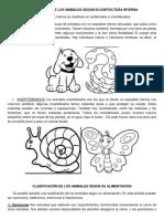 Descripción de los animales según su estructura interna.