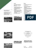 Destrucción de la Vegetación natural.docx