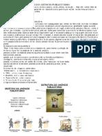 Ativid Ade de Produção d e Anúncio Publici Tário