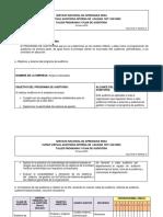 Formato Guia Programa y Plan de Auditoria Interna-1