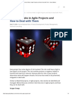 Common Risks in Agile Projects and How to Deal With Them