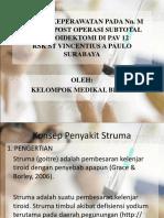PP Struma