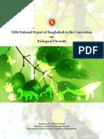bd-nr-05-en.pdf