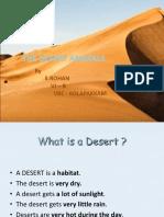 Desert Animals by Rohan