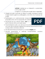 Fisa Ppt, Internet - Welcome to the Jungle - CERINȚE