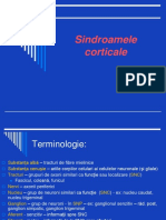 sindroame corticale