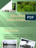 Relieve Amazon i Co