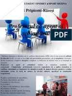 IPG Pripiceni