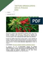 Plantas Nativas Brasileiras Comestíveis e Pouco Conhecidas