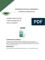 UNIVERSIDAD ESTATAL AMAZÓNICA.docx