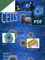 Prokaryotic and Eukaryotics cells