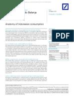anatomy Indo consumption.pdf