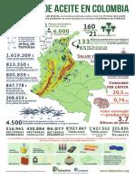 Aceite de Palma en Colombia