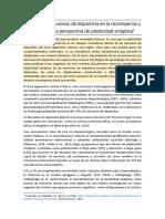 Pignatelli, M.; Bonci A. (2015)