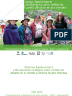 Sistemas Agroforestales y Restauracion E