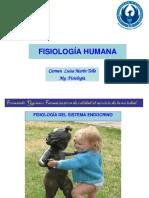 2019 FISIOLOGÍA DELSISTEMA ENDOCRINO  (2).pdf