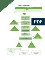 Corneal dystrophy and keratoconus concept map/ pathophysiology