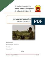 Informe de visita Tecnica -Sotelo.docx