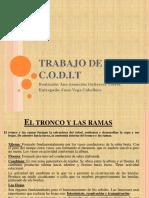 TRABAJO de Codit Ana Asunción Gutiérrez